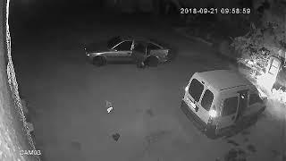 Нападение на инкассаторов в Семафорном переулке, Одесса, 21.09.2018