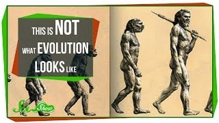 Repeat youtube video This is NOT What Evolution Looks Like