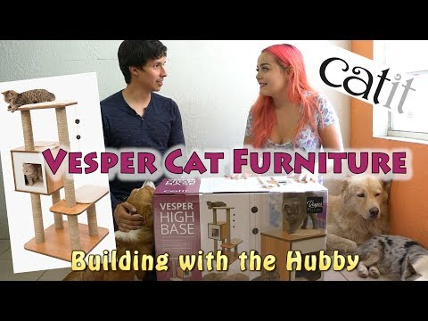 Vesper Cat Tree Setup & Review