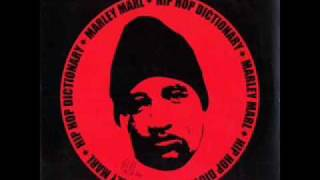 Marley Marl feat. Common - Funk Shit