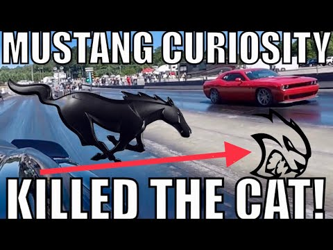 2018 MUSTANG Eats HELLCAT then Calls out DEMON!!!