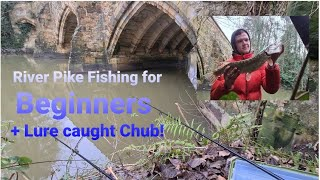 Pike Fishing for Beginners Lure Caught Chub
