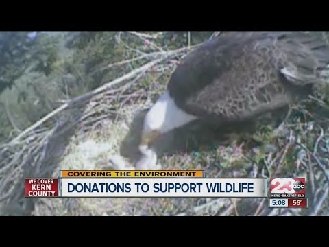 California Department Of Fish And Wildlife Asking For You Help