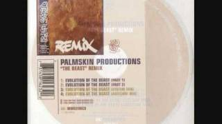 Palmskin Productions - Evolution Of The Beast (Autechre mix)