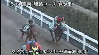 [調教] 090114 マイネレーツェル 「日経新春杯」前追い切り
