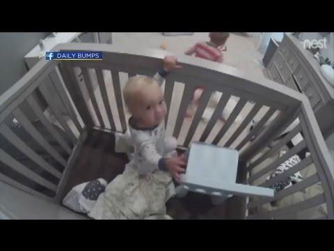 The Daily Joe Toddler Crib Escape