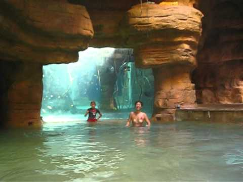 Going Down The Abyss Waterslide At The Atlantis Youtube