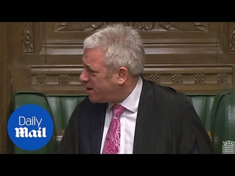 John Bercow tells Tory MPs to 'grow up' after shouting abuse