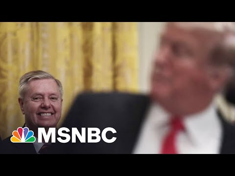 Lindsey Graham: GOP Cannot Grow Without Donald Trump | The 11th Hour | MSNBC