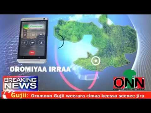ONN :Breaking news/Oduu Amma