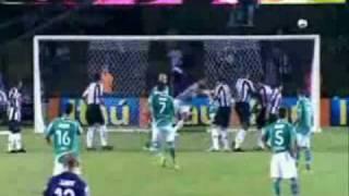 TOP 10 - Gols Mais Bonitos do Palmeiras em 2008