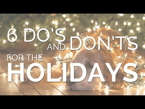6 Do's and Don'ts for the Holidays
