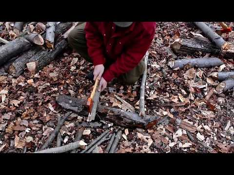 Bens Backwoods - Safe and Efficient axe use:  Small trees