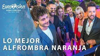 Miki lleva la fiesta a la alfombra naranja | Eurovisión 2019