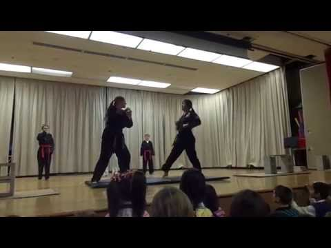 2015 Troy Martial Arts Demo at Martell Elementary School