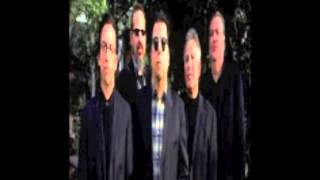 Los Lobos interview 1988 - Steve Berlin