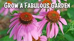 A Fabulous Garden in 5 Easy Steps