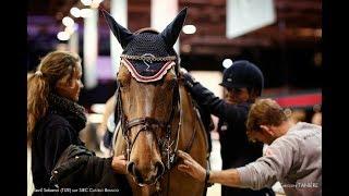 ~ Конный спорт ~ Crazy in love  ~ Equestrian sport ~