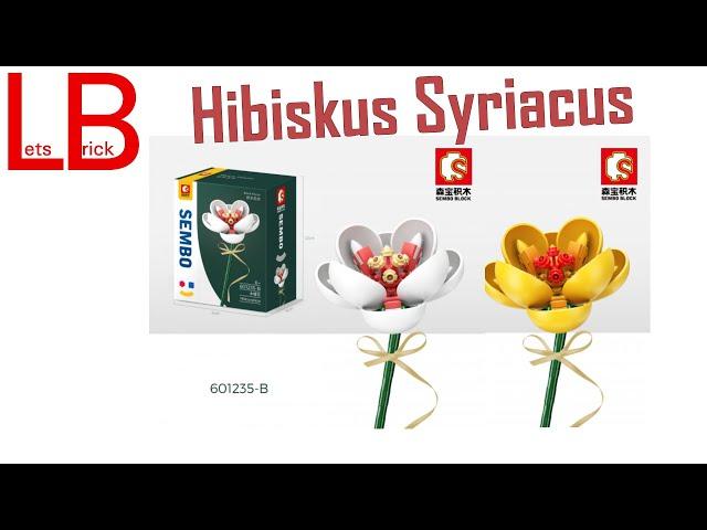 #ZusammenBauen: Sembo Hibiscus in Gelb und in Weiß - 601235
