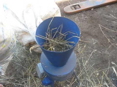Сенна – трава со множеством полезных свойств