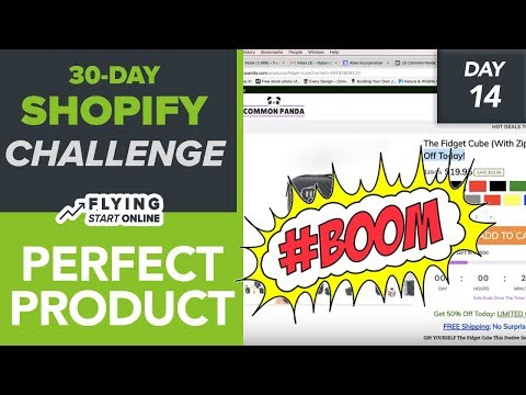 THE PERFECT SHOPIFY PRODUCT PAGE! DESCRIPTION, IMAGES, CTA, SCARCITY - (Day 14/30) #Bizathon3