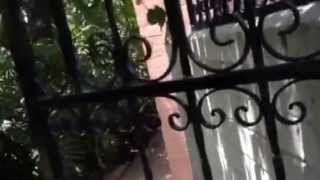 Burglary Prevention In Beverly Hills. Increase Height Of Wall Increase Security Gates Los Angeles