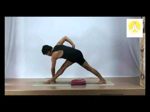 parivritta trikonasana for beginners  youtube