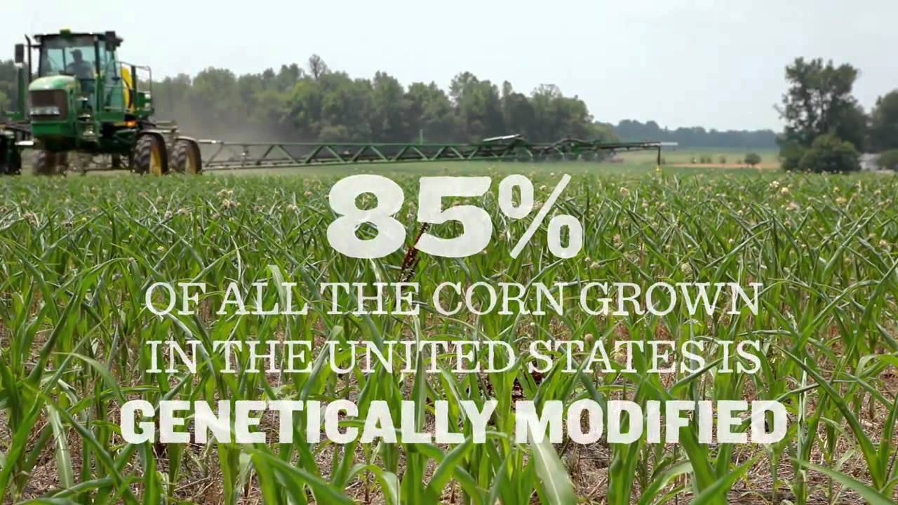 Download GMO OMG ~ Documentary Trailer