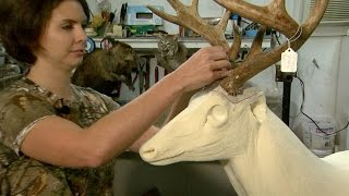 NC Now | Animal Art: Taxidermy in NC | UNC-TV