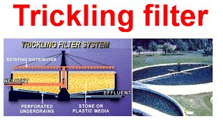 Trickling filter system