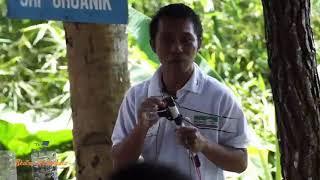 Download lagu Tutorial Pertanian | Pembuatan MOL atau Pupuk Cair Organik