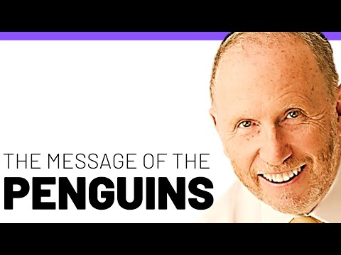 Are You A Penguin? - Inspirational Life Lessons W/ Stephen Baars - Motivation, Inspiration, And More