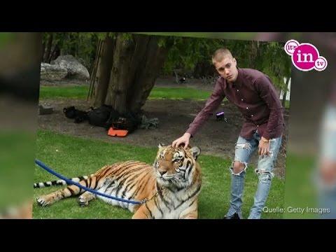 Justin Bieber im Frisuren-Wahn