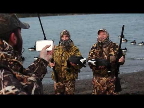 BN Outdoors | UWC Adventures - Destination 1 California Brant Geese