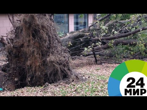 На Тбилиси обрушился ураган - МИР 24