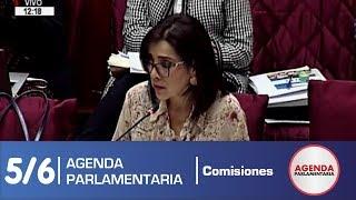 Sesión Comisión de Constitución 5/6 (20/05/19)