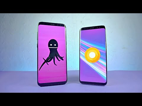 Samsung Galaxy S8 Android 8.0 Oreo Official Review! (4K)