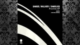 Samuel Wallner , Damolh33 - Cut Off Limbs (Pjotr G Remix) [HYPNOTIC ROOM]