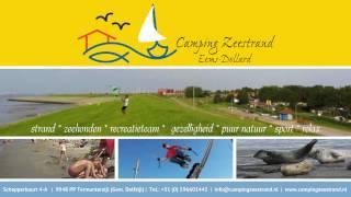 Welkom op Camping Zeestrand Eems Dollard -www.campingzeestrand.nl
