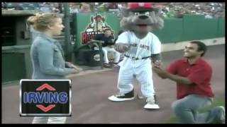 Marriage Proposal Gone Wrong at Baseball Game Rock Cats (PART 5)
