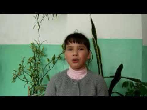 Изображение предпросмотра прочтения – НоннаЗавьялова читает произведение «Ехала деревня» (Русский фольклор )