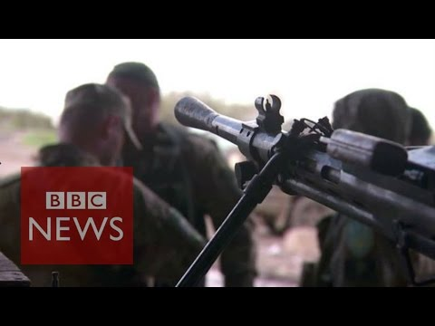 Ukraine crisis: 'We feel abandoned' - BBC News