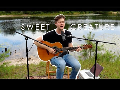 Sweet Creature Cover- Harry Styles (Cover by Tyler Sarfert)