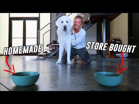 Testing STORE BOUGHT vs HOMEMADE Dog Soup! (Super Cooper Sunday #221)