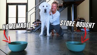 Download Testing STORE BOUGHT vs HOMEMADE Dog Soup! (Super Cooper Sunday #221) Mp3 and Videos