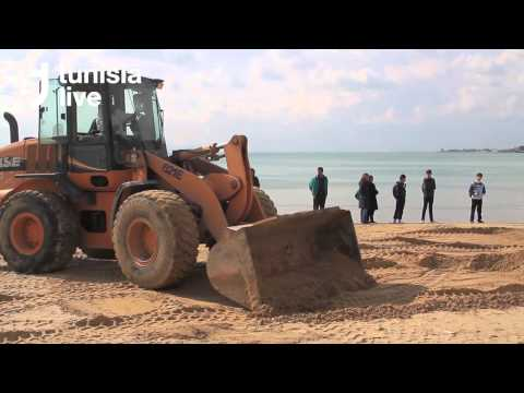 Endangered Whale Brought Ashore in Tunis Suburb