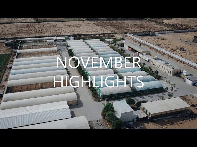 November Highlights