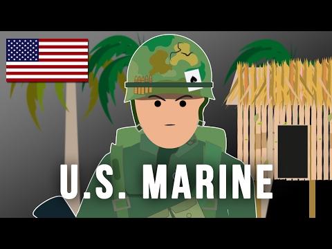 U.S. MARINE (Vietnam war)