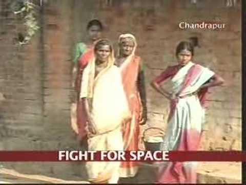 Vidarbha village battles tiger menace