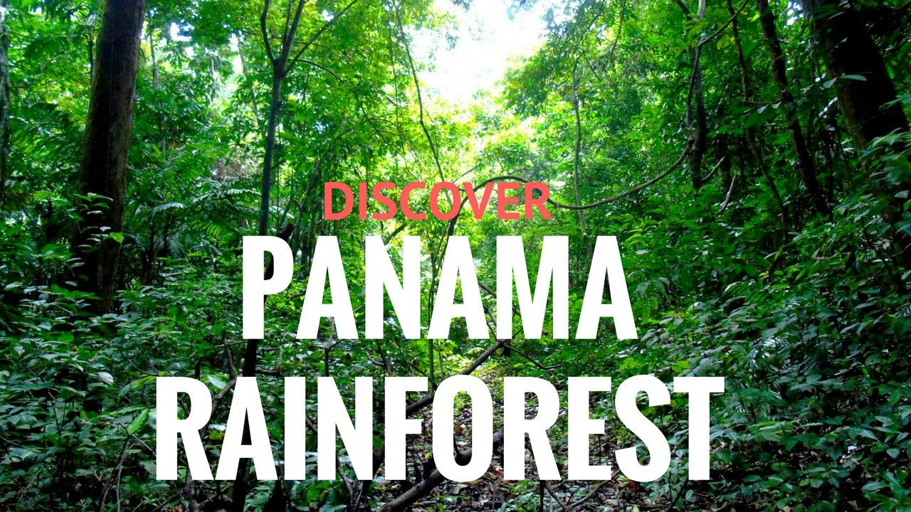 Best Tours In Panama